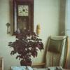 SM_DIG 05754.jpg