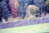 SM_RAID 00070.jpg