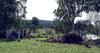 SM_DIG 02200_09.jpg